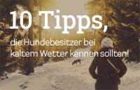 10 Tipps, für kaltes Wetter mit Hund