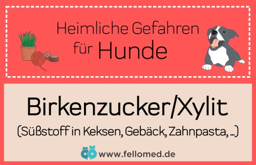 Giftig für Hunde: Birkenzucker/Xylit