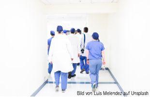 Spezialisten in der Tiermedizin