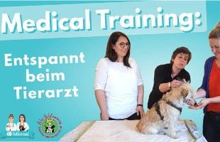 Medical Training bei Hund und Katze