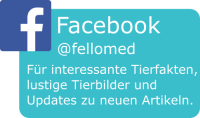 fellomed auf Facebook