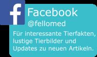 fellomed auf Facebook