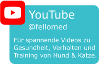 fellomed auf YouTube