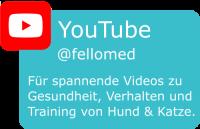 fellomed auf YouTube