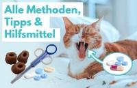 Katze Tablette geben: Methoden, Tipps, Tricks & Hilfsmittel