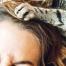 Katzen: Krallen schneiden