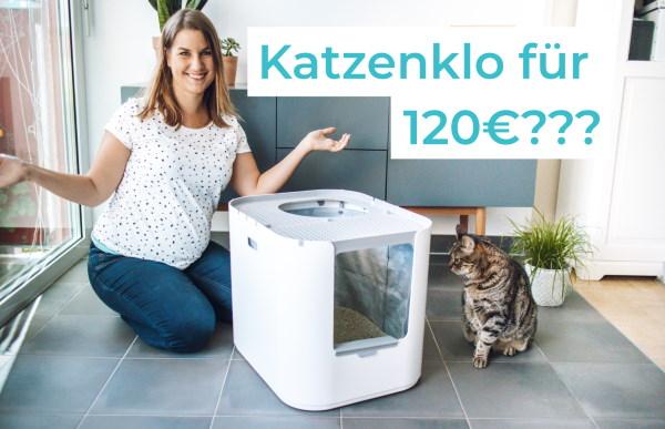 Modkat XL Katzenklo - Test und Erfahrungen